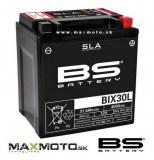 BIX30L